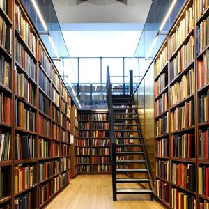 Библиотеки Большой Мартыновки